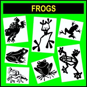 Animals - Frogs