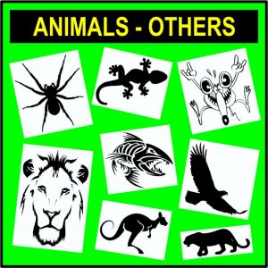 Animals - Others